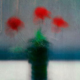 Red Flower Photographie digital color Acceptée ,salon Daguerre Paris 14