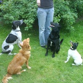 Fina, Enie, Butch und ich