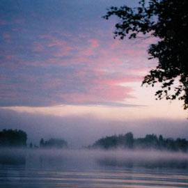 Nebel ziehen auf und verbreiten eine geheimnisvolle Atmosphäre.
