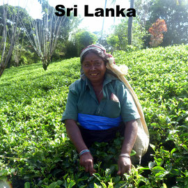 Vietnam Heise - Reisen nach Sri Lanka