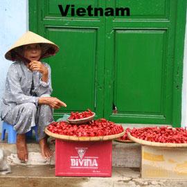 Vietnam Heise - Reisen nach Vietnam