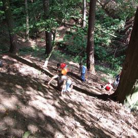 unsere Wald-Rutschbahn - cool