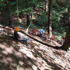 unsere Wald-Rutschbahn - steil