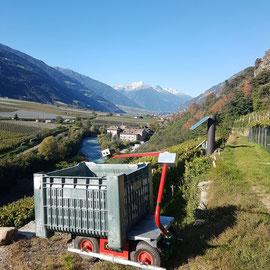 Der Elektro- Mehrzweckwagen am Sonnenberg