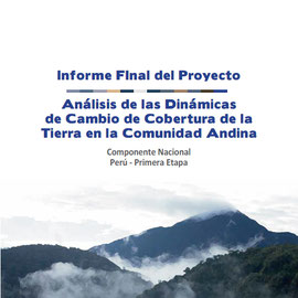 http://www.minam.gob.pe/ordenamientoterritorial/wp-content/uploads/sites/18/2013/10/Informe-final-de-Proyecto-Dinamica-de-los-Cambios-de-la-Tierra-CAN.pdf