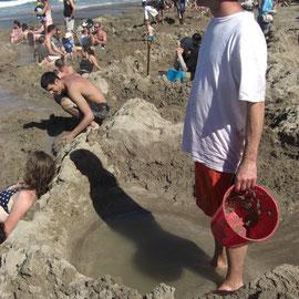 Digging us pool
