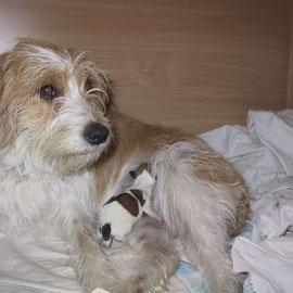 Mama Andrella (Sally) mit Einzelkind Deetje