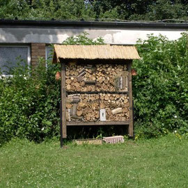 "Unser ""Insektenhotel"""