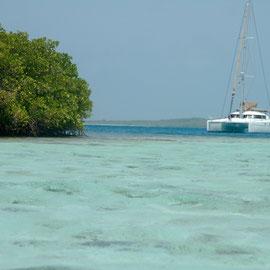 Geschütztes Ankern hinter Mangroven in glasklarem Wasser