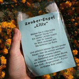 Geschenkpverpackung  mit Zauberengel Lilly / Artikel - Nr. 3007