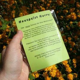 Hausgeist Harry in Verpackung / Artikel - Nr. 3002