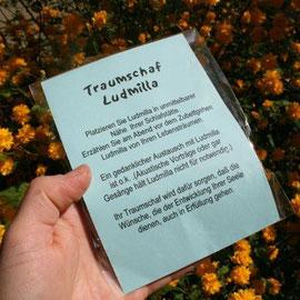 Traumschaf Ludmilla in Geschenkverpackung / Artikel - Nr. 3004