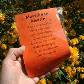 Geschenkverpackung mit Muttihuhn Amalie / Artikel - Nr.3014