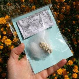 Rückseite der Verpackung von Traumschaf Ludmilla / Artikel - Nr. 3004