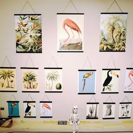 tropical-prints-kunstdrucke-papeterie-tuebingen