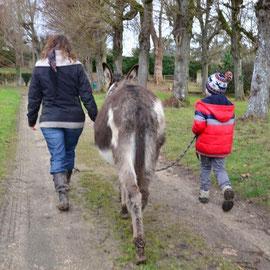 Balade dans le parc du château de Gillevoisin (Février 2015)