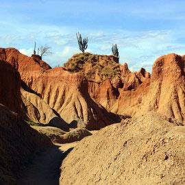 Tatacoa- Wüste
