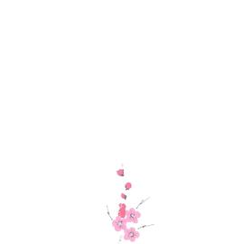 Pflaumenblütenzweig, kämpfende Vögel werden beobachtet Sumi-e, japanische Tuschmalerei auf Reispapier