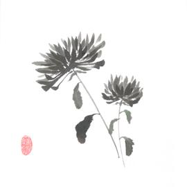 Chrysanthemen klein und groß Sumi-e, japanische Tuschmalerei auf Reispapier