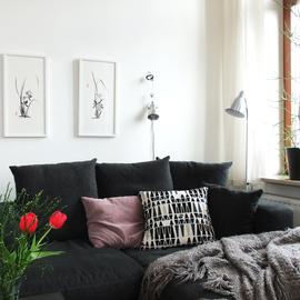 zwei gerahmte Orchideen Sumi-e im Wohnzimmer