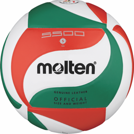 Volleyball V5M5500