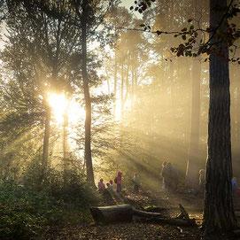Eltern und Kinder beim Spaziergang im Wald