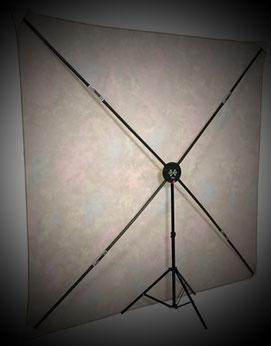X-Frame von hinten