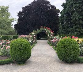 Botanische tuinen van Christchurch