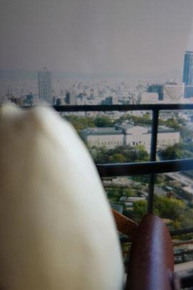 「通天閣からの眺め」