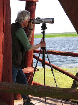 Beobachter mit Spektiv, Foto: Andrea Arends
