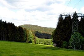 Bild: Wünschendorf Bank Nummer 13