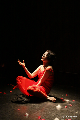 "©️Teijiro Kamiyama ""yumeko""2010"