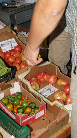 Gemüse Markt der Algarve,Portugal