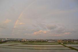 6月 早苗餐(さなぼり)の 夕暮れの田に 虹が立ち
