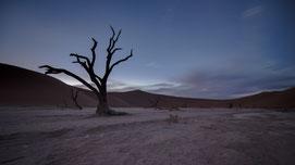 dead vlei sossusvlei namibia sunrise