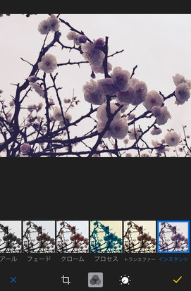 iPhoneで画像の編集