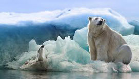 Antartique (pxhere)