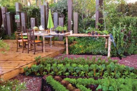 PHOTO: JUDYWHITE/GARDENPHOTOS.COM