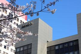 春の銀座大野ビル