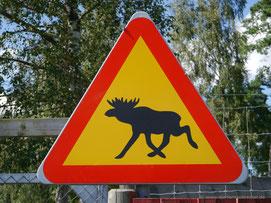 Das berühmte schwedische Straßenschild