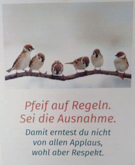 Blog - Wahrheit. Sei wachsam - Vögel