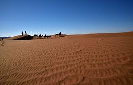 Unsere  Karawane zieht durch die Sahara