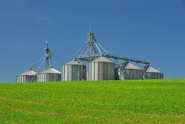 Biomassekraftwerke – Geschichte, Technologie & Zukunftschancen