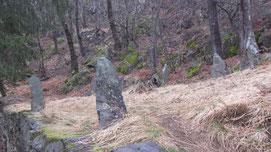 I megaliti di Castelluccio