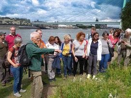 Exkursionsleiter Hubert Sumser wies am Rheinufer auf viele besondere Pflanzen der Ufervegatation hin.   Bild:Christoph Große-Bremer