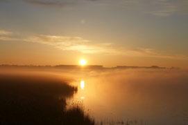 Pressebild Sonnenaufgang am Federsee