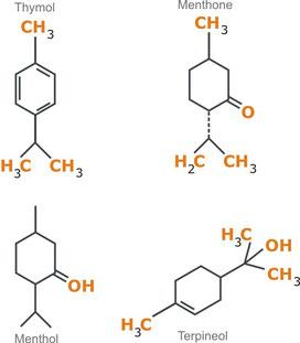Thymol menthone menthol terpineol
