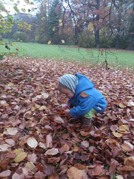 Tagesmutter Weimar - Kind spielt mit Laub