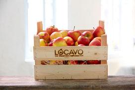 Obstlieferung Äpfel aus dem Alten Land