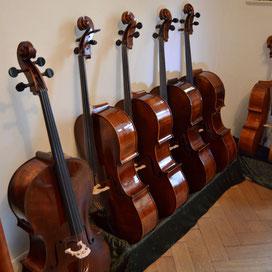 Klangschöne Schülercelli aus Bonn